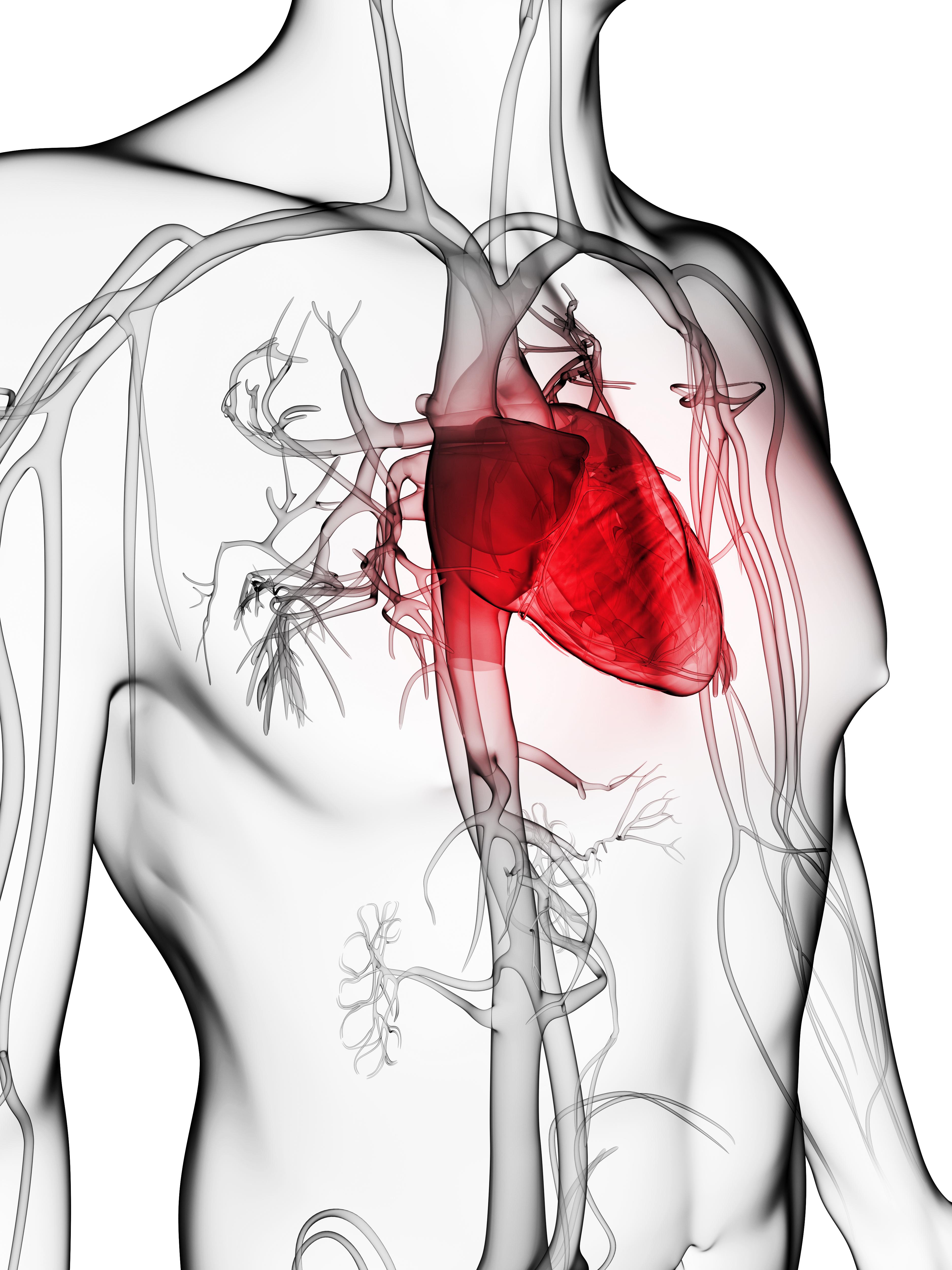 השתלת שיניים בקרב חולי לב
