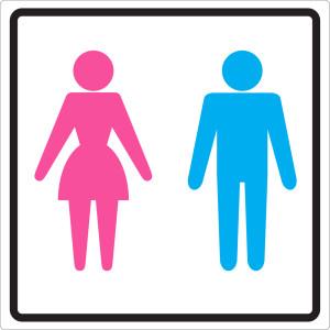 הבדלים בין גברים לנשים